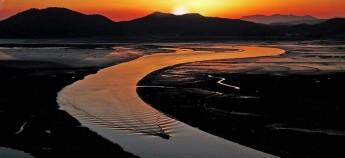 被列为5大河岸湿地之一的顺天湾,各类的候鸟、泥蟹以及鱼类多不胜数。