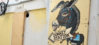 greece donkey f