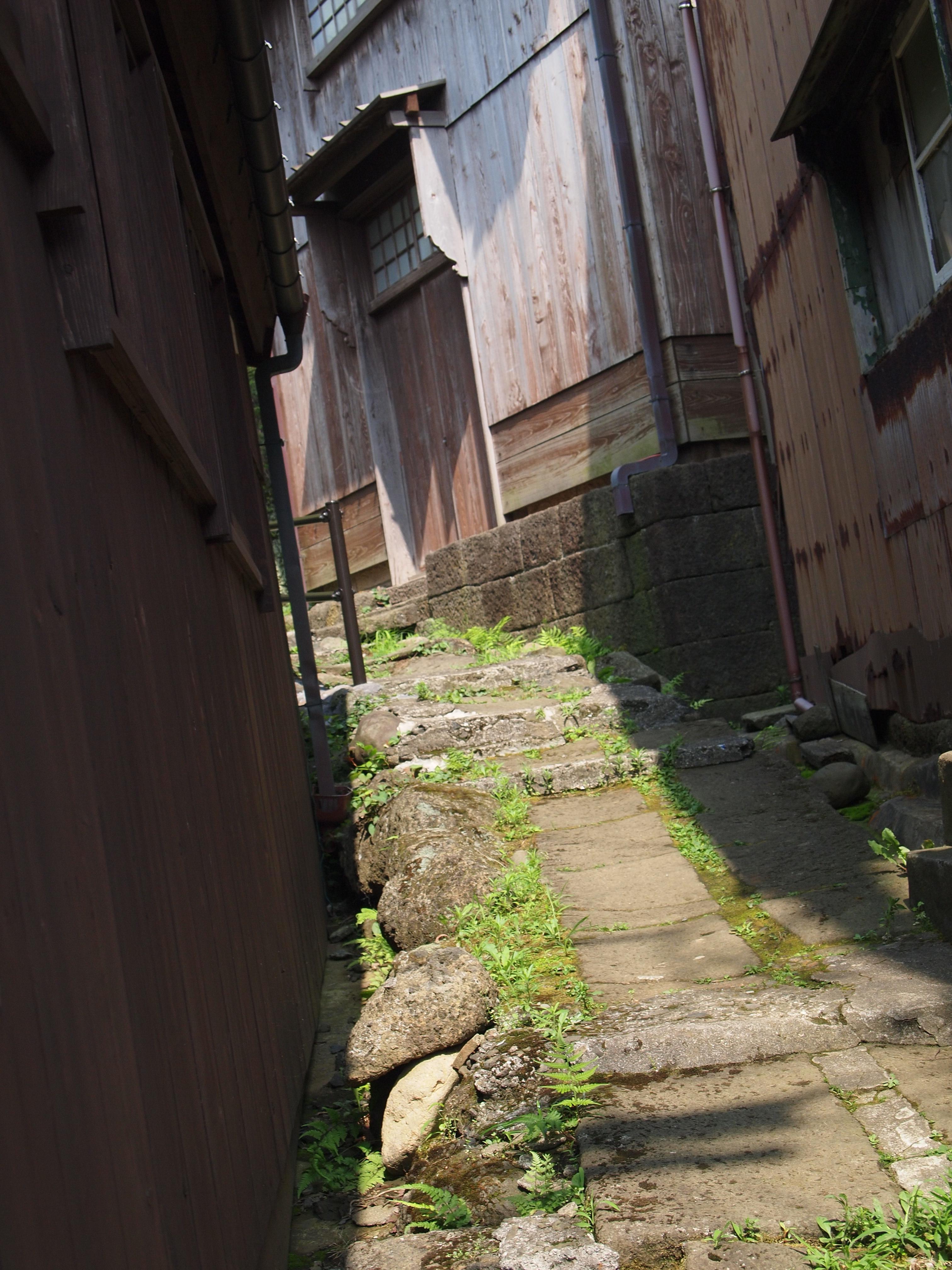 地形凹凸不平的小路是这里的特色之一。