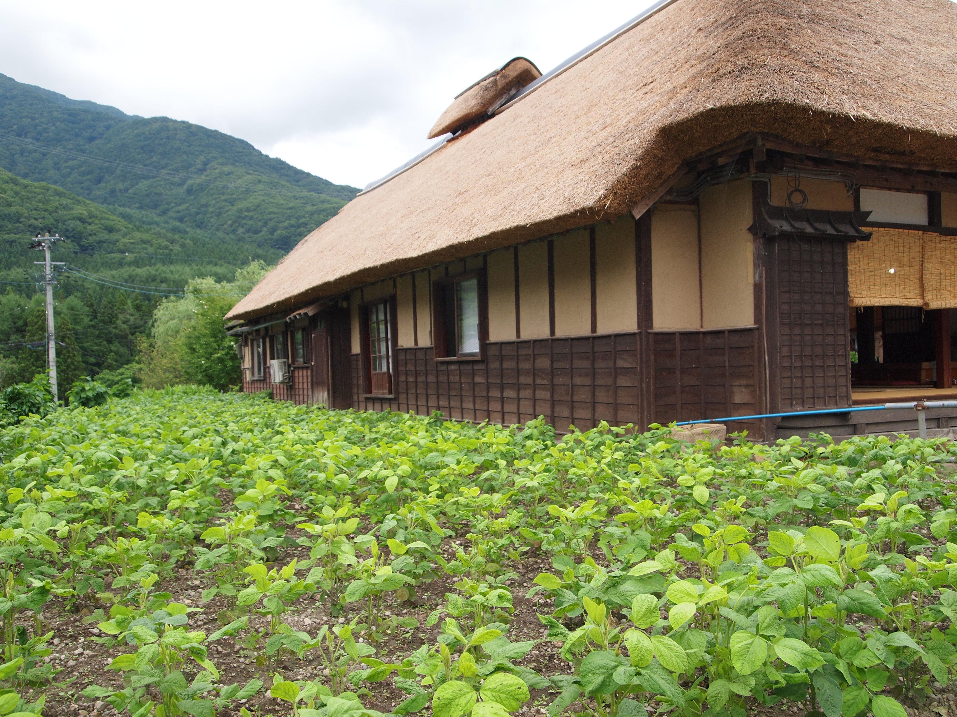 大内宿的房子。