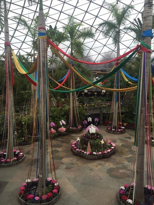 鸟取花回廊,不同的季节都可以看到不一样的花卉。