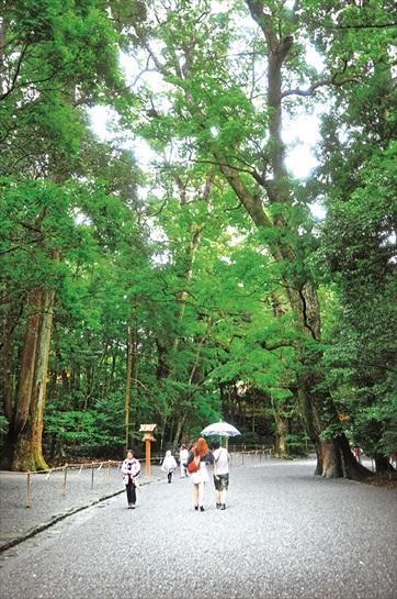 漫步在雨中的感觉格外清新,享受大自然给于的宁静。