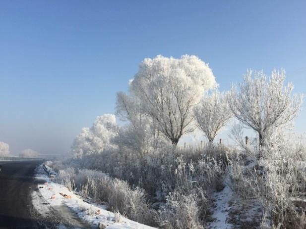 雾凇之美,一生一定要来欣赏!