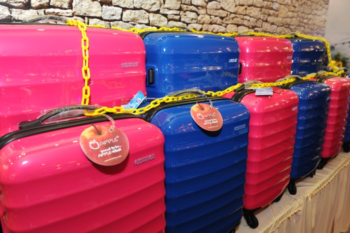 颜色鲜艳的行李箱,咨询度很高。
