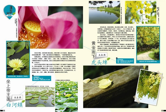 J focus-taiwan-6 (Large)