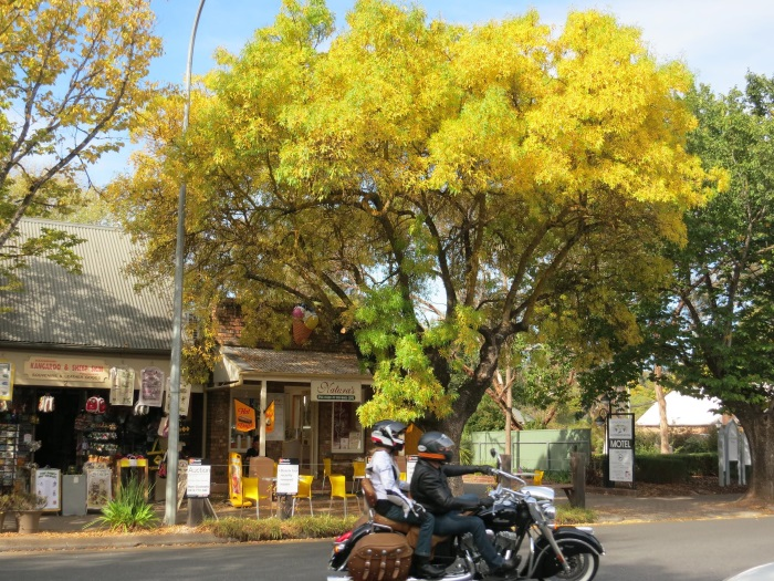 5 the Hahndorf