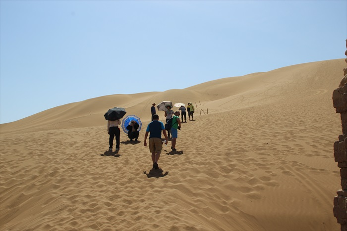 走在沙漠上,对于大马人来说,是一种难得的体验。