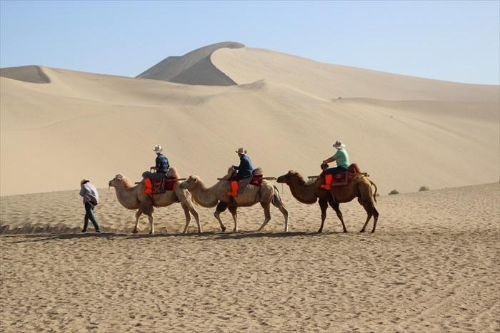 还有人骑着骆驼呢!