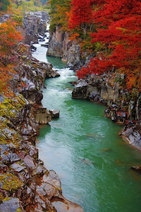 Geibikei Gorge in Iwate Prefecture is too beautiful to describe, you must experience on your own! Part of the 100 places to visit in Japan, it has 100 meter walls on both side as the boat takes you through.