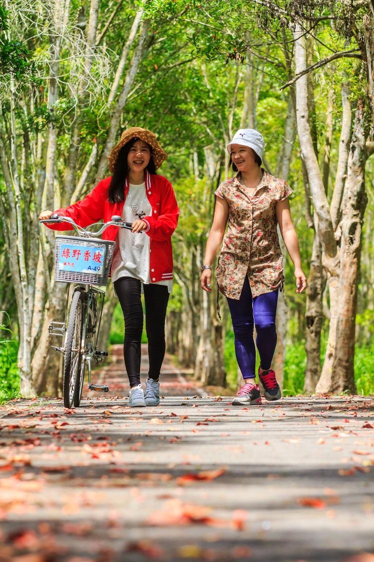 厌倦了都市的尘嚣与繁忙生活,欲回归大自然,洗涤疲惫心灵,台湾的休闲农场,可说是最佳的选择。