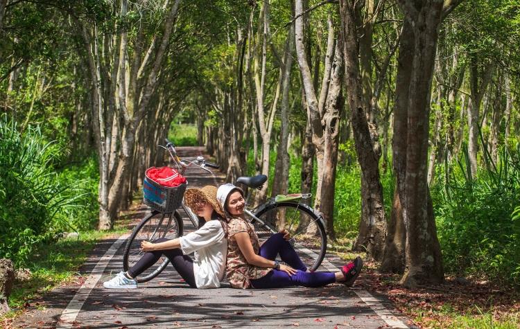 大农大富平地森林园区位于台湾花莲县光復乡,游客可以在绵延的人造林道內,踩脚车或漫游。