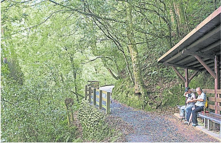拉拉山自然保护区是大自然愛好者的首选地点之一,置身青翠樹林的怀抱之中,心旷神怡。
