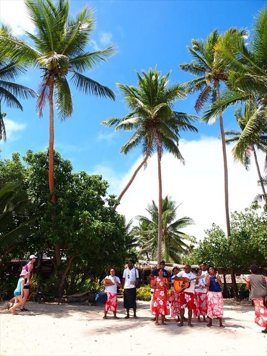 岛上的欢迎仪式。椰树,是热带型气候的代表。