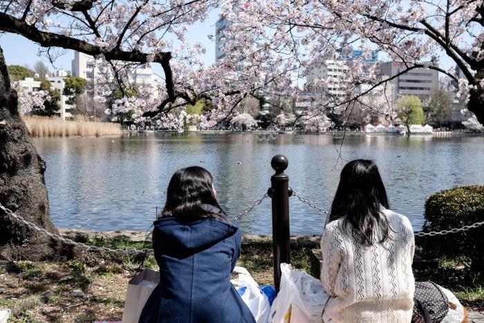 坐在河边,三五花瓣飘零,屏住呼吸,别说一句话,因为任何一个字都是多余的......