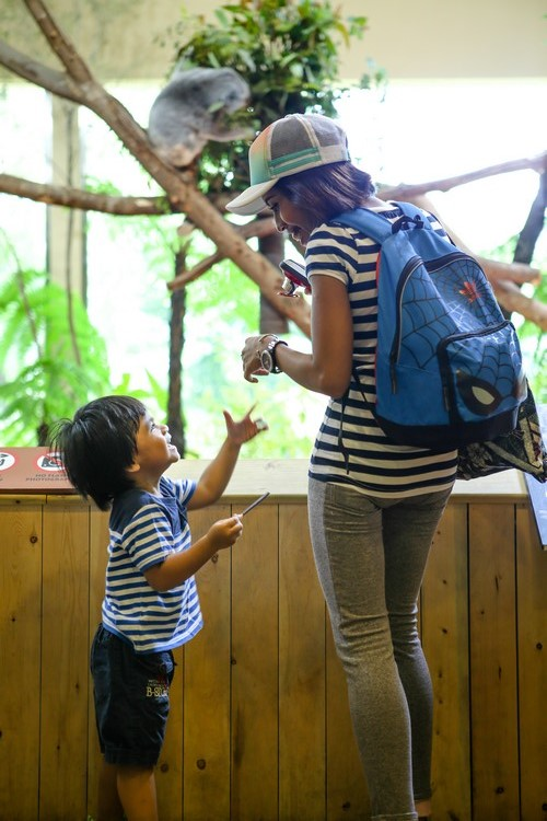 在澳洲展区能够见到自由放养的灰袋鼠和沙袋鼠之外,也是促进亲情的好地方。