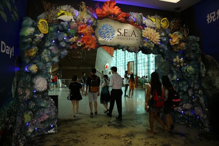 足东南亚海洋馆,透过全球最大的海洋之窗寻幽探秘,为奥妙多姿的海中奇境所震撼。