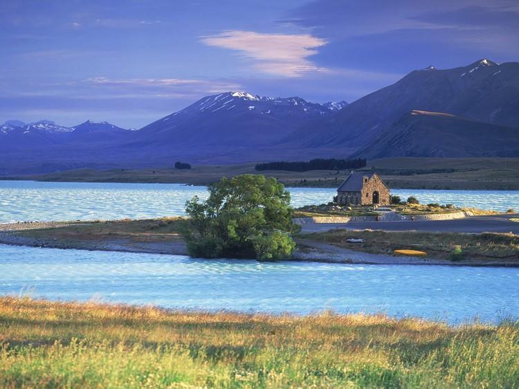 美若梦境的特卡波湖,来对季节还能赏鲁冰花哟!