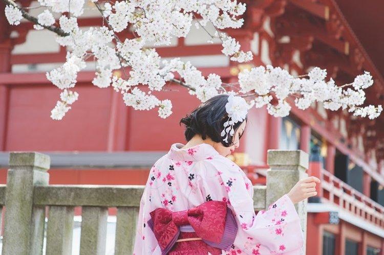 身穿和服走在樱花树下,春天还能比这更美好?