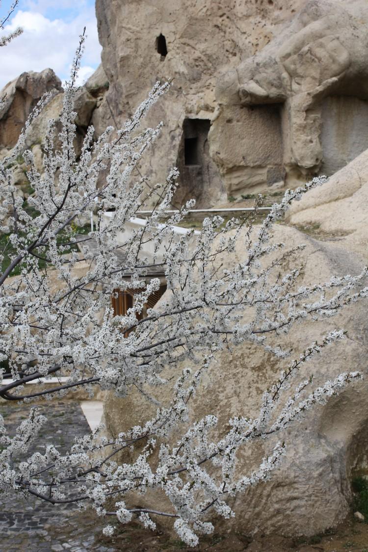 CAPPADOCIA (11)