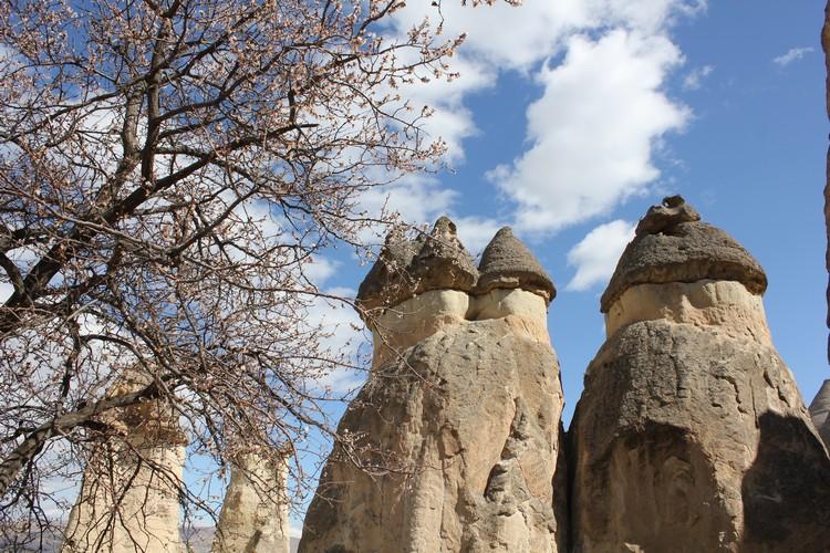 CAPPADOCIA (26)