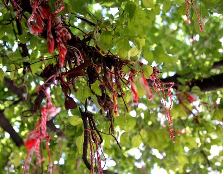 保加利亚风俗;冬末,把红绳绑在光秃秃的果树枝干上。待春来,嫩叶花瓣果实长成;象征万物之灵,以我为生!