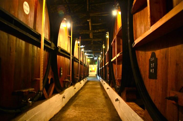 Taylor's葡萄酒厂。