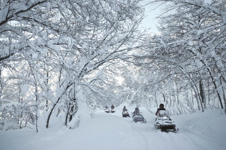 冬恋白の北海道 · 惊险刺激的雪上摩托车