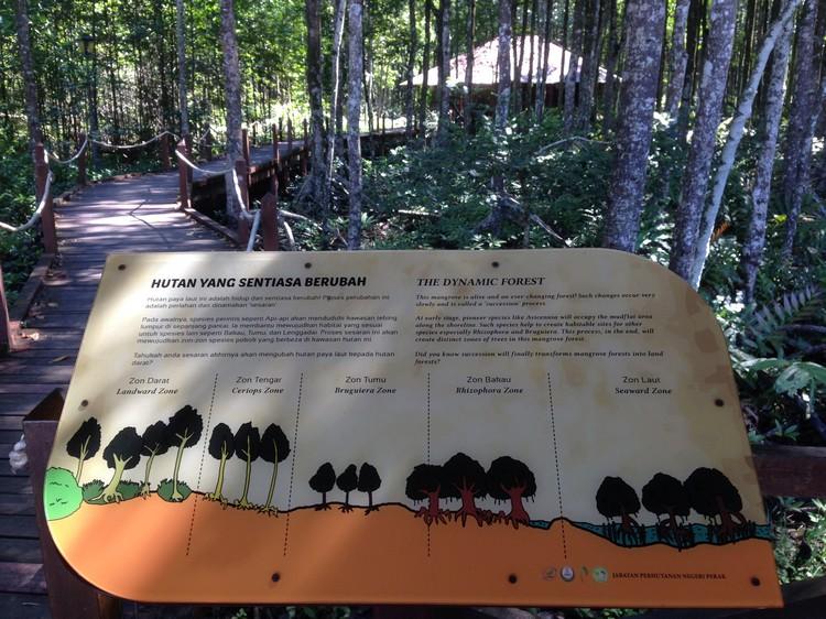 虽然没有解说员,但只要细看解说板,肯定会更了解红树林。