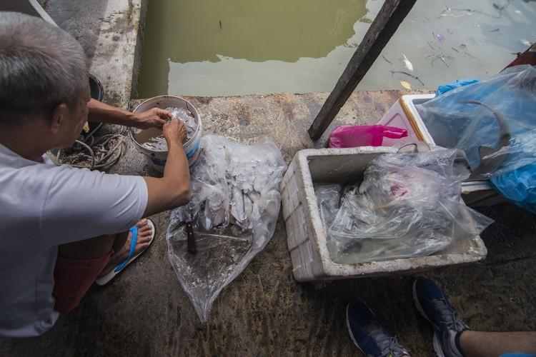 在码头,可见等候顾客买海鲜的渔民,图为老渔民正在清洗墨鱼。
