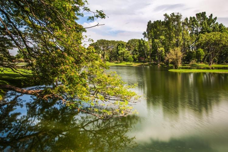 taiping lake resize
