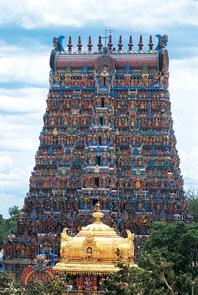 历史悠远的印度,孕育着自成一格的风俗文化。