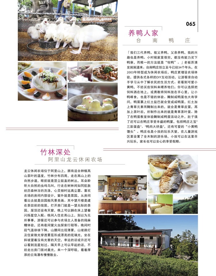 亲近台湾土地 与大自然对话 (二)