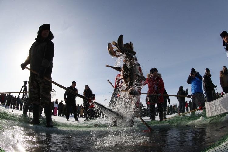 查干湖冬捕,是拥有中国国家级非物质文化遗产名衔的冬季鱼猎活动。