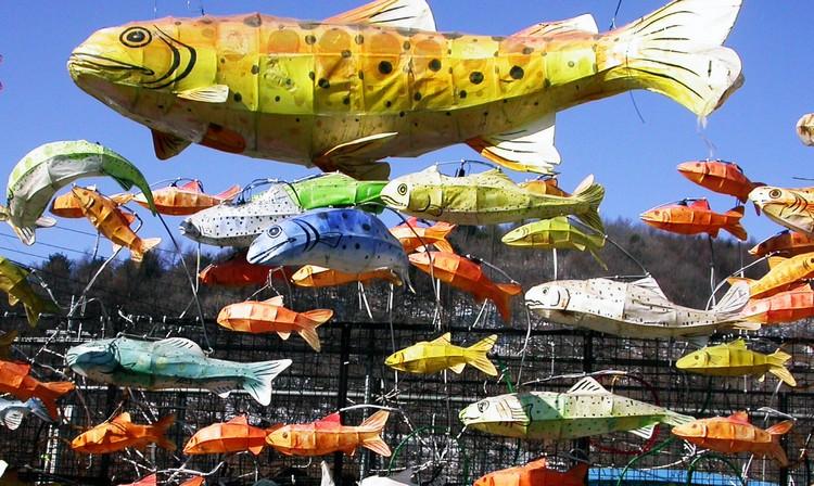 你也可以在这里进行山鳟鱼灯笼彩绘活动。