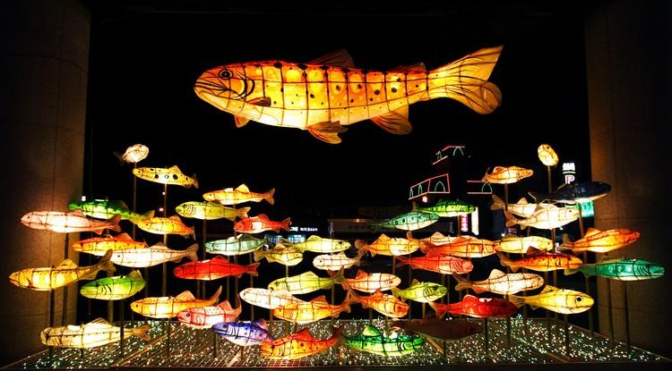 到了夜晚,颜色各异的山鳟鱼就像活起来了一样。