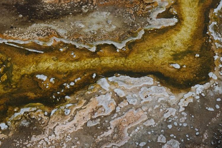 泉水的图案。