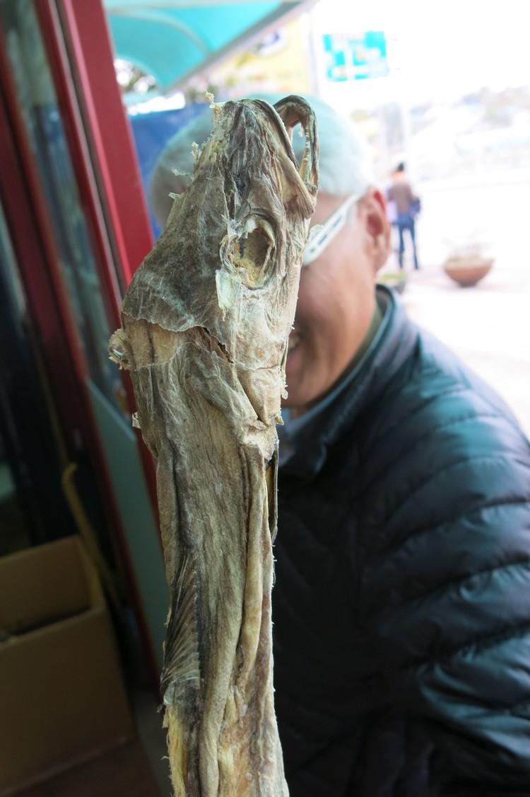 黄太鱼的前身是身形成长条状的黄线狭鱈。