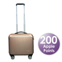 "Apple 16"" Cabin Luggage"