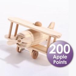 Carpenter Biplane Airplane