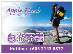 Apple Flexi Holiday