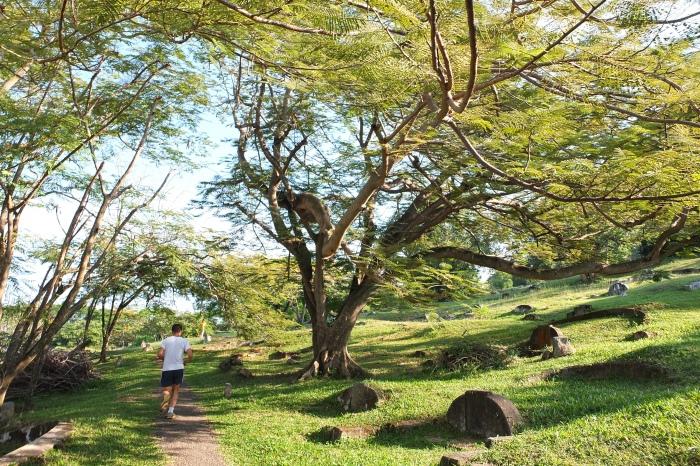 三宝山适合慢行跑步。