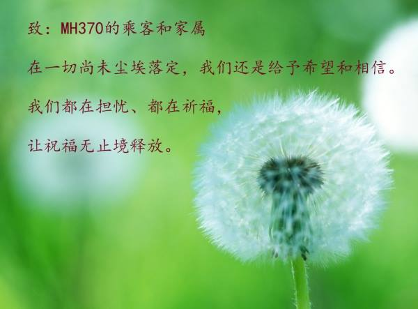 wishes for MH370
