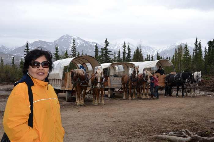 我们在世界鼎鼎有名的Denali国家公园区域,这里是全美国人的梦想旅游点。