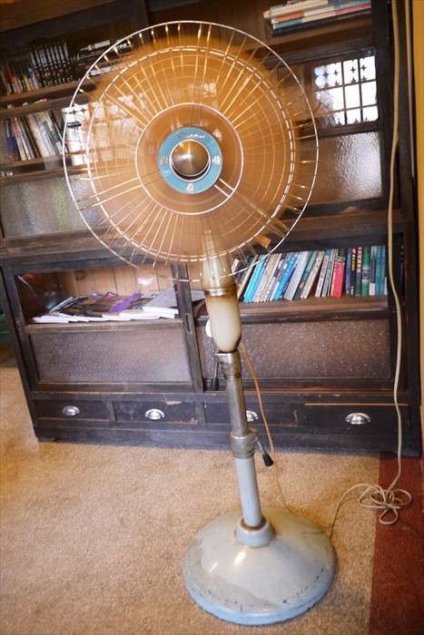 展示实用两相宜的大同电风扇。