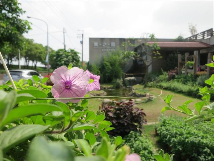薰之园以花迎宾。