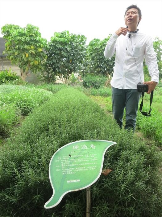 虽然种类繁多,吴文平仍致力向媒体介绍每一种香草的功能。
