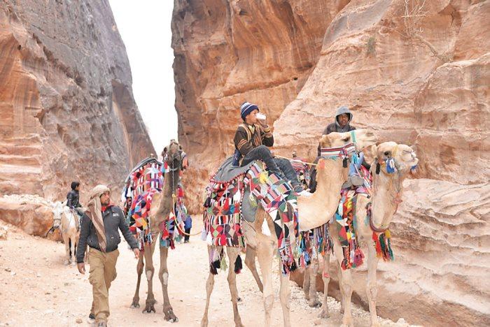 骆驼与佩特拉,见证了约旦历史。
