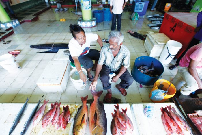 在鱼市场和鱼贩探讨当日早上捕获的大鱼。