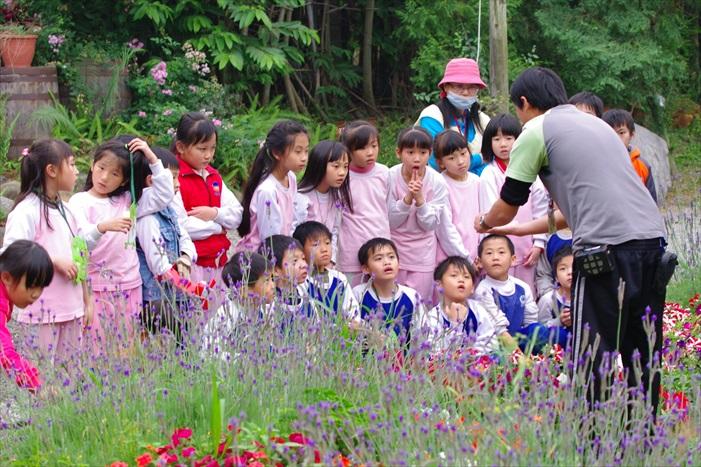 自然香草教学体验区让学生们对香草有更深入认识。