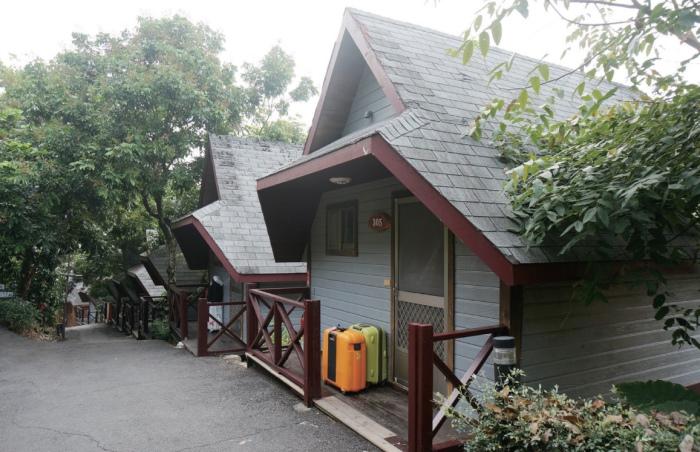 我们住的山林独栋小木屋。